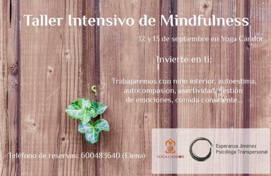12_y_13_SEPTIEMBRE_TALLER_INTENSIVO_MINDFULNESS