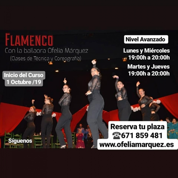 NIVEL_AVANZADO_FLAMENCO